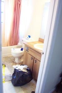 bathroomminiremod0011