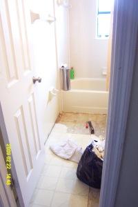 bathroomminiremod002