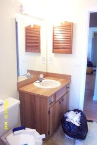 bathroomminiremod003
